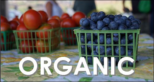 organic veg 2