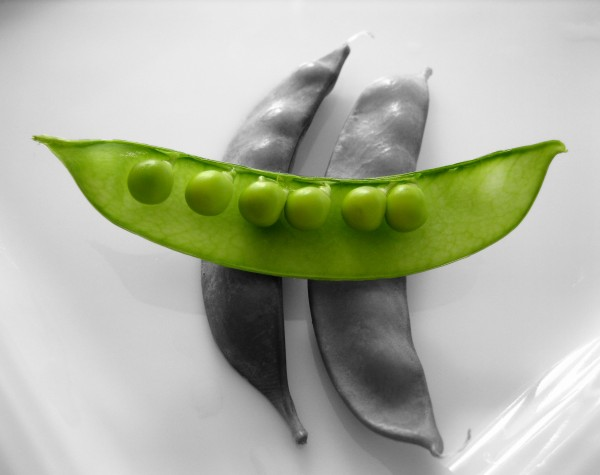 snow-peas-isolated-1324013