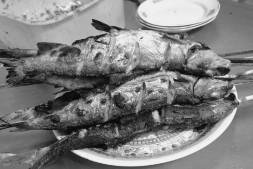 201607 RECIPE FISH TACO