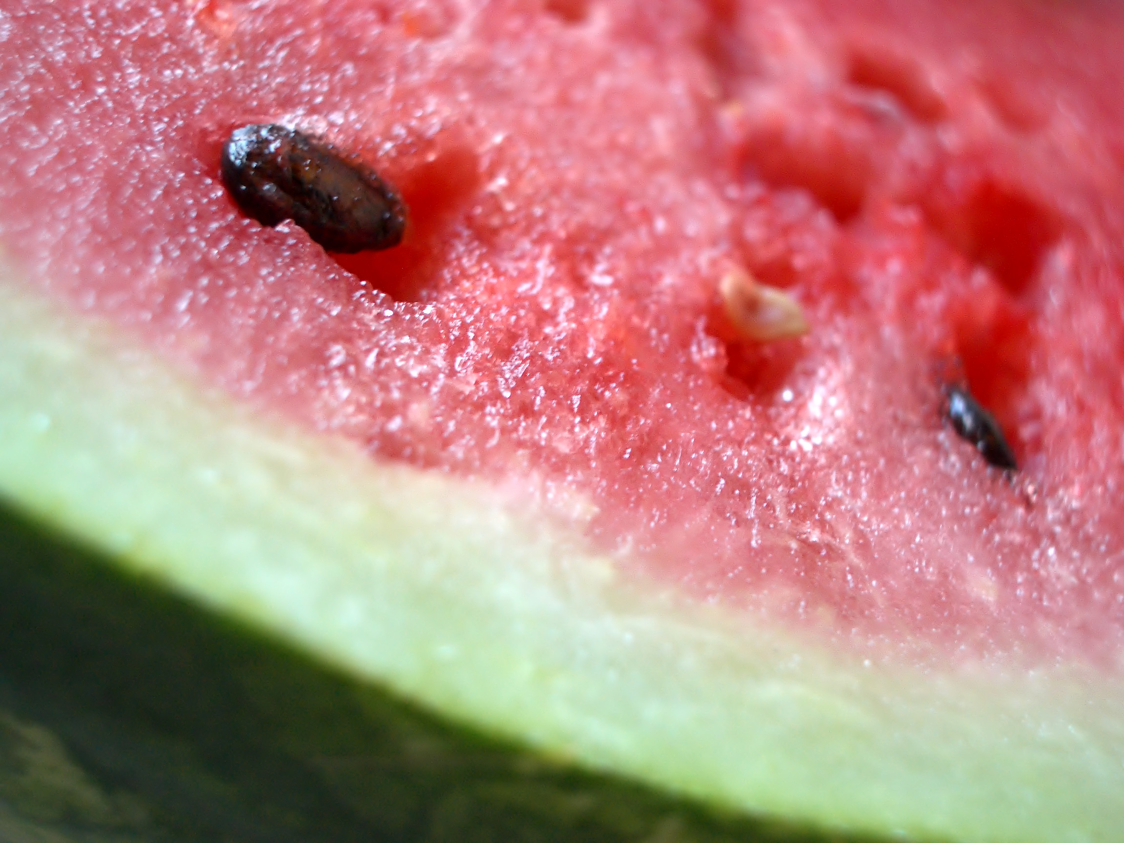 halved watermelon